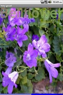 Garden Flowers 2 FREE- screenshot thumbnail
