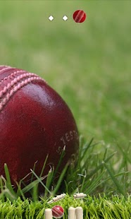 Cricket Ball- screenshot thumbnail