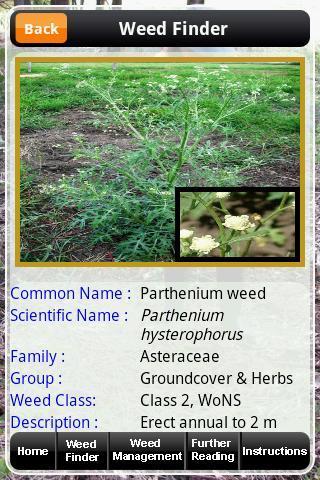 WSQ Weeds of SQ Phone
