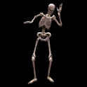 3D Dancing Skeleton LWP icon