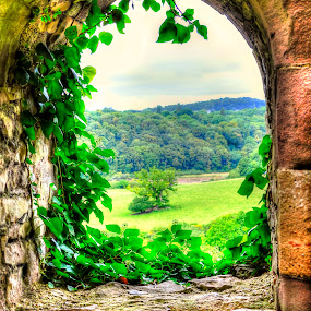 Chepstow Castle Window by Skye Ryan-Evans - Buildings & Architecture Public & Historical ( welsh-english border, wales, motte & bailey castle, castle ruins, historic site, monmouthshire, chepstow castle, wye valley, welsh castle norman castle, chepstow )