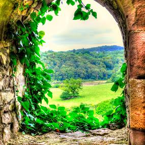 Chepstow Castle Window by Skye Ryan-Evans - Buildings & Architecture Public & Historical ( welsh-english border, wales, motte & bailey castle, castle ruins, historic site, monmouthshire, chepstow castle, wye valley, welsh castle norman castle, chepstow )