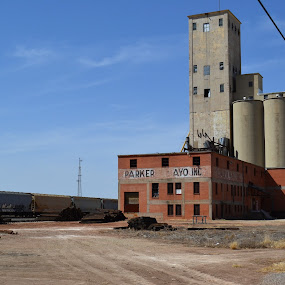Grain Elevator by Cal Johnson - Buildings & Architecture Decaying & Abandoned ( old, texas, interesting, decay, abandoned )
