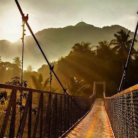 Sunrise on a hanging bridge by Blue Bell Bantigue - Buildings & Architecture Bridges & Suspended Structures