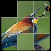 Picture Slide Tiles Puzzle