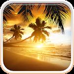 Beach Sunset Live Wallpaper