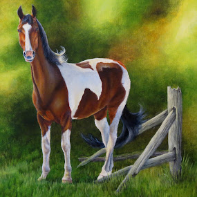 Waiting for You by Alicia McNally - Painting All Painting ( saddlebred horse, paint horse, horses, horse, horse art )