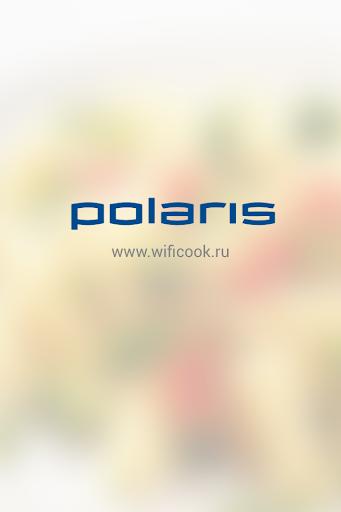 Polaris EVO 0125: service