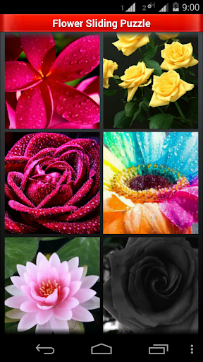 Beautiful Flowers: Puzzle Game