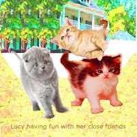 Screenshot of Talking Cat With Friends