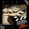 Most Dangerous Animals Sounds icon