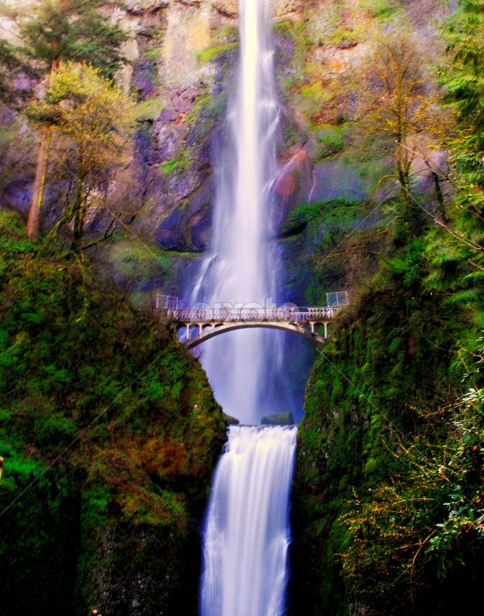 by Trisha Payne - Landscapes Waterscapes ( oregon, multnomah falls, waterfall )
