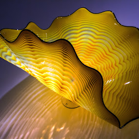 Dale Chihuly in London March 2014 by Adele Price - Artistic Objects Glass (  )