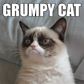 The Grumpy Cat Free Fan App