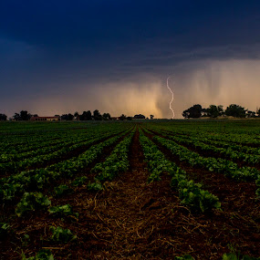 Stormy Day by Hilton Viney - Landscapes Weather ( canon, field, clouds, thunder, eos, lightning, thunderstorm, 600d )