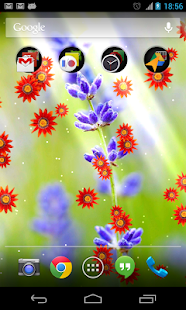 Flower photo Live Wallpaper- screenshot thumbnail