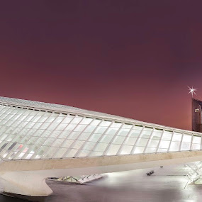 Calatrava Train station Belgium by Steve De Waele - Buildings & Architecture Bridges & Suspended Structures ( sky, night photography, colors, blue hour, sunset, buildings, cityscape, architecture, calatrava, nightscape )