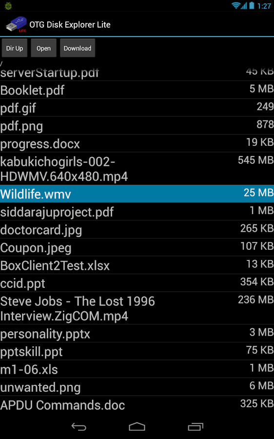 OTG Disk Explorer Lite- screenshot