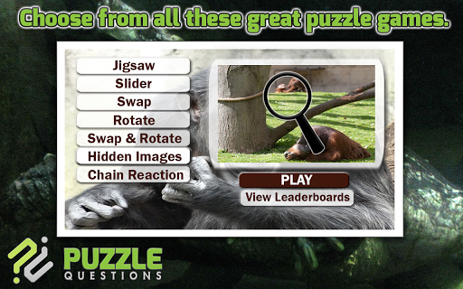 Zoo Puzzles