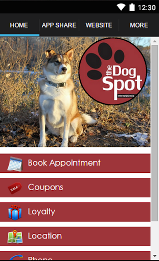 The Dog Spot