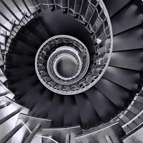 Perfect Spiral by Antonio Amen - Black & White Buildings & Architecture ( stairs, bw, steps, spiral )