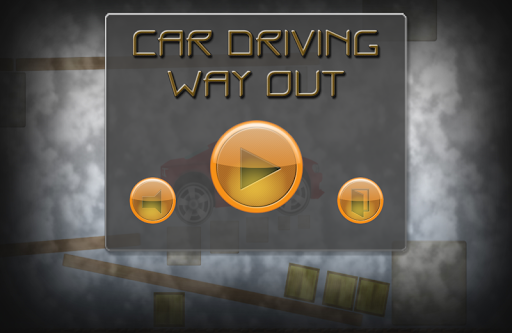 Car Driving. Way Out