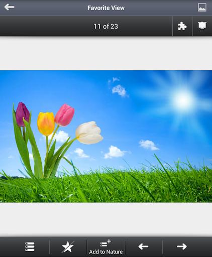 【免費攝影App】PHOT-O-MANIA-APP點子