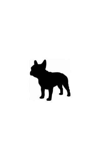 GeekBulldog