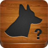 QuizTutor:Dogs