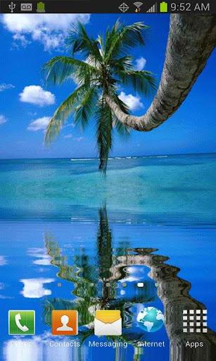 Coconut Tree on the Beach LWP