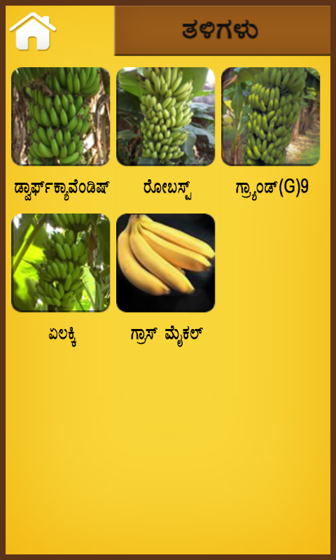 Banana kannada- screenshot