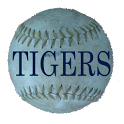 Schedule Detroit Tigers fans icon