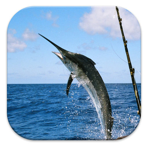 Deep Sea Fishing Guide