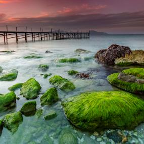 The green rocks by George Papapostolou - Landscapes Waterscapes ( george papapostolou, sunset, greece, kos island, seascape, nikon, landscape )