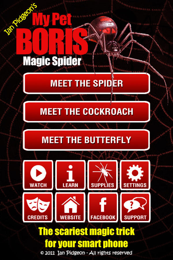 Magic Spider - screenshot