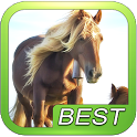 Horse Game Puzzle icon