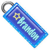 Brandon Name Tag