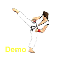 Final Karate Demo logo