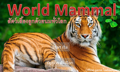 World Mammal - Animal Quiz