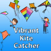 Vibrant Kite Catcher