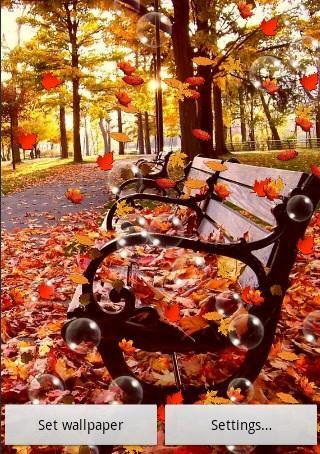 玩攝影App|秋季動態壁紙免費|APP試玩