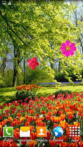 春季動畫壁紙