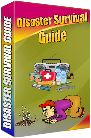 Disaster Survival Guide App