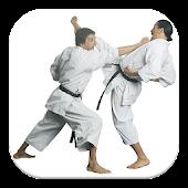 Guía de Karate