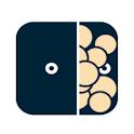 PayCash icon