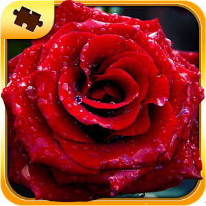 Flower Puzzles for PC and MAC