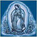 Fondos de Virgen de Guadalupe icon