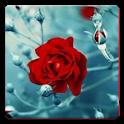 Friendship Sher-o-Shayari SMS icon