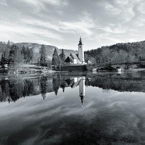 reflections by Anže Papler - Black & White Landscapes