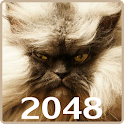 20 48 Cats Puzzle with mPLUS icon